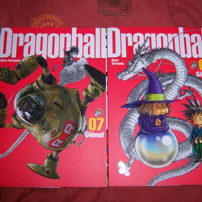 Dragon Ball Perfect édition tomes 07 & 08