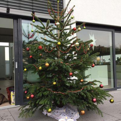 24.12.2015: Wir wünschen allen ein frohes Weihnachtsfest und einen guten Rutsch in's neue Jahr!