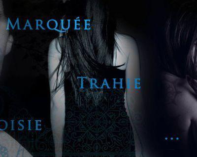 La Maison de la Nuit écrit par P.C Cast et Kristin Cast