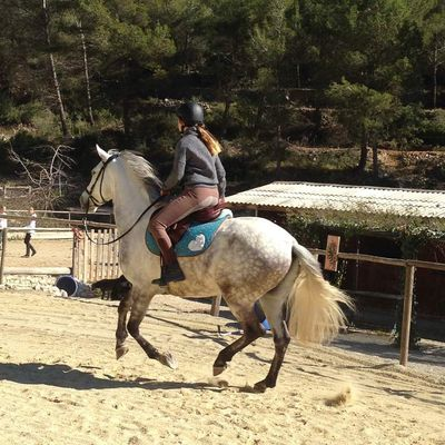 Jolie Jumper