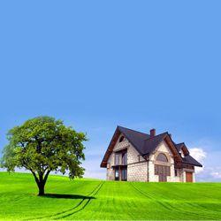 Dream Property In Noida