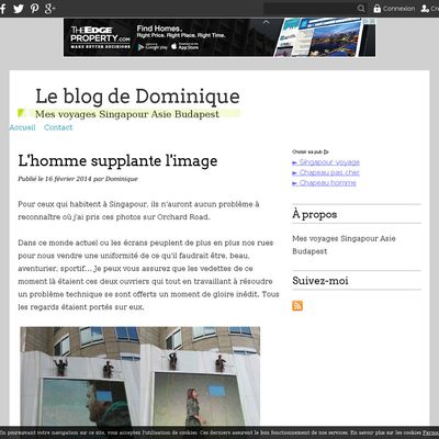 Le blog de Dominique