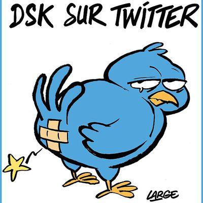 DESSIN de LARGE : DSK sur Twitter !