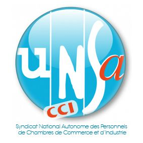 UNSA-CCI Paris Île-de-France