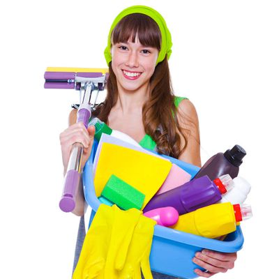 From Grooming Brush to Squeegee All Important Tools for Home Cleaning