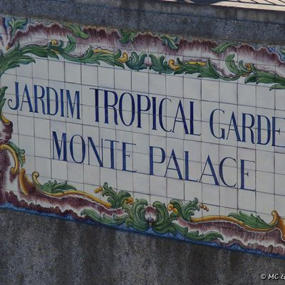 Mai 2014 - Madère : Jardin Tropical do Monte Palace