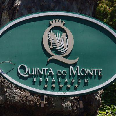 Hôtel Quinta do Monte ***** Funchal