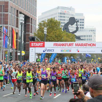 Ergebnisse 34. Frankfurt Marathon (25.10.2015 )