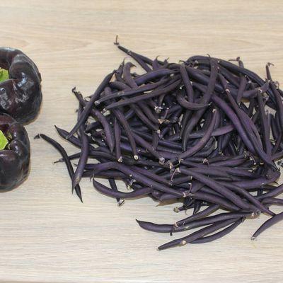Le violet, tendance de l'été 2015 au Potager du Caillou