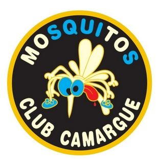 mosquitos webmaster brodwings