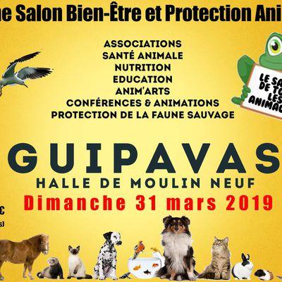 Salon du Bien-être et de la protection animale Guipavas 2019
