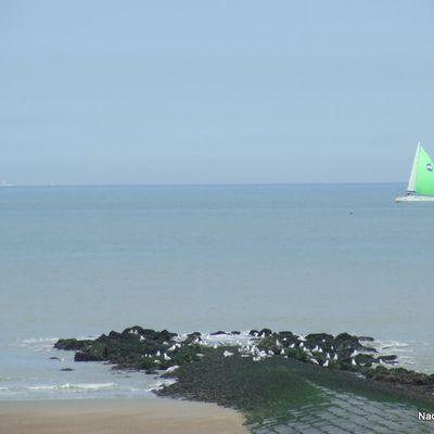 Ecoliers Voyageurs