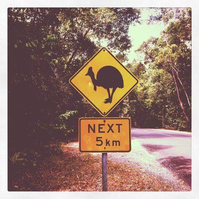 Aventures en Pays d'Oz