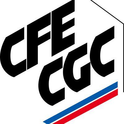 CFE CGC ASN Villarceaux
