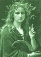 Clairière Bandrui, la femme druide
