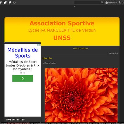 Le blog de l'Association Sportive du Lycéee Margueritte