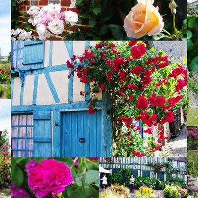 La 87ème fête des roses à Gerberoy, beau village de Picardie