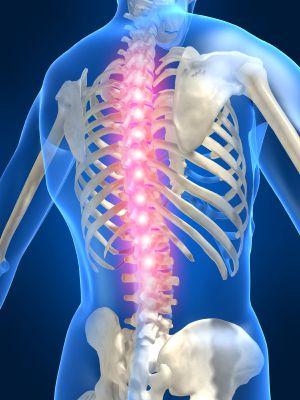 Spondyl'asso: Association Nationale de lutte contre la spondyloarthrite