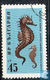 Timbre Hippocampe Bulgarie 1961