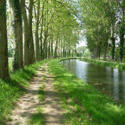 Le Canal de Berry Expose à THENIOUX (18100)