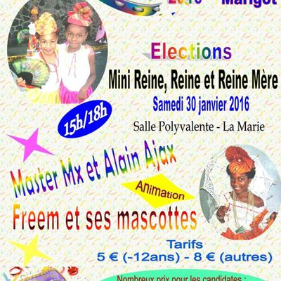 Carnaval 2016 - Elections