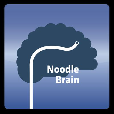 NoodleBrain - The Emotional Network