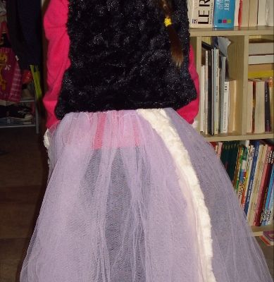 Carnaval : costume princesse/chat