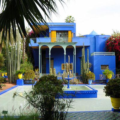 Maroc - Jardins Majorelle