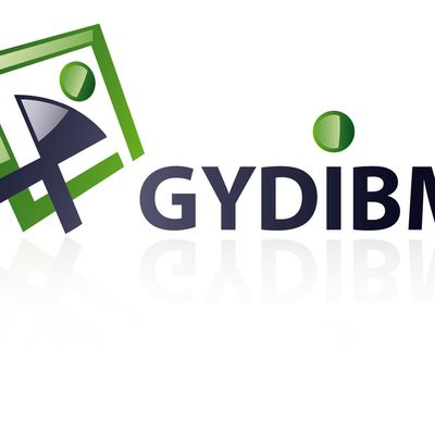Le blog de gydibm