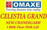 Contact: +91-9873111181
