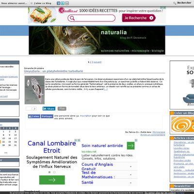 Naturalia - sciences naturelles