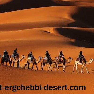 Camel trekking in desert Merzouga