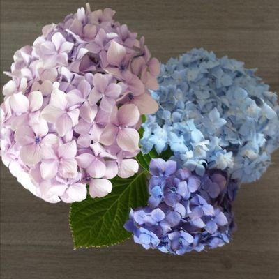 Bouquet de bonheur.