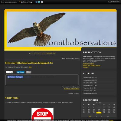 ornithobservations
