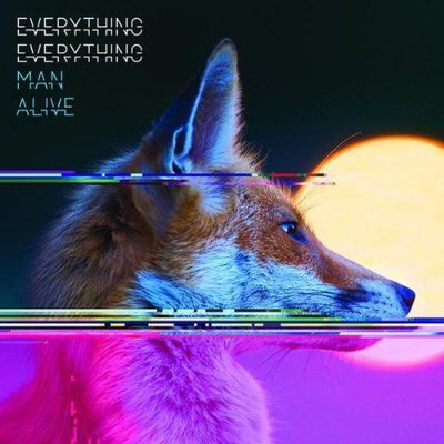 Découverte musicale #4 : Everything Everything