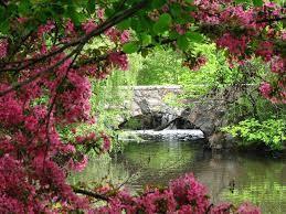 la nature, source de vie
