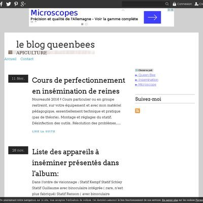 le blog queenbees