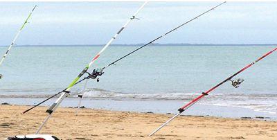 Sea fishing-Pêche en mer