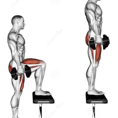 Exercices jambes(legs) fitness & bodybuilding