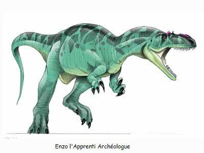 Archéologie et paléonthologie