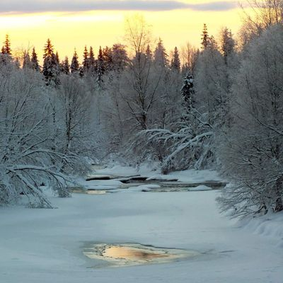 My trip in Lapland