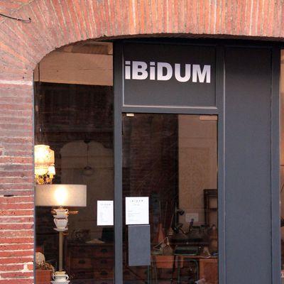 IBIDUM, 13 rue de la Fonderie, Toulouse