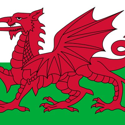 Pays de Galles-France 6 nations 2016