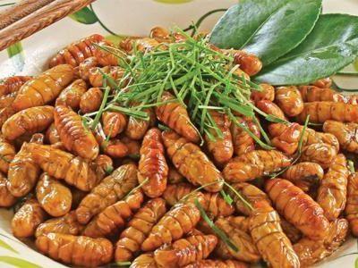 Món ngon đặc sản tại Việt Nam