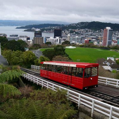 Episode 24 – Wellington, une capitale vivante