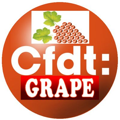 CFDT GRAPE HOSPITALITY