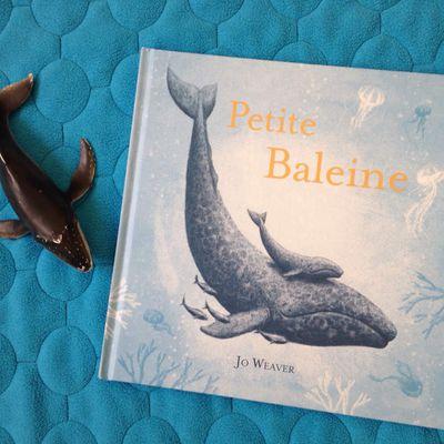 Nouveauté : Petite baleine de Jo Weaver aux éditions Kaléidoscope