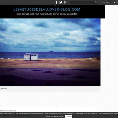 lesastucesdelau.over-blog.com