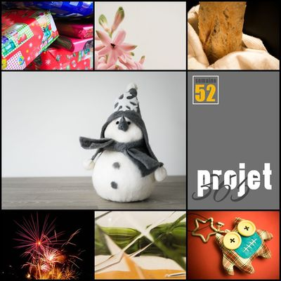 Projet 365 - Semaine 52 + Fin