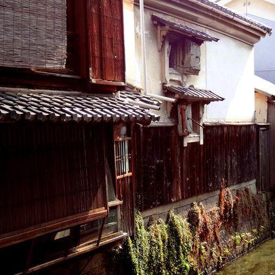 Nagahama...2012-2013: encore et toujours!